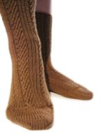 Brown_sock_2_1